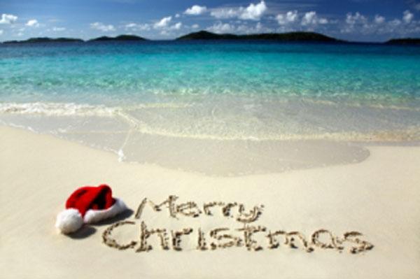 12 days of christmas hawaiian style activity