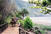 Kalaupapa Mule Ride and Tour on Moloka'i