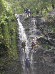 Waterfall Rappelling on Maui