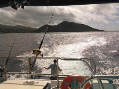4 hour fishing charters trolling for Mahi, Ono and Ahi. (Dorado, Wahoo & Tuna)